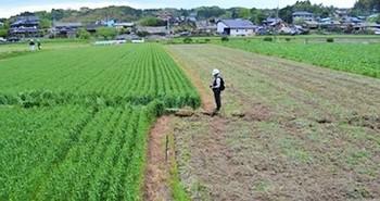 布田川断層4.jpg