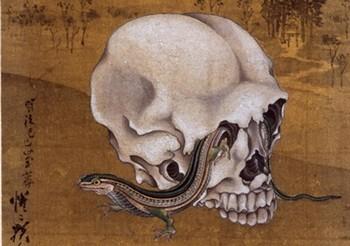 河鍋 暁斎「髑髏と蜥蜴」.jpg