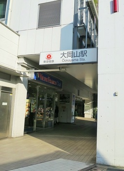 IMG_4765.JPG
