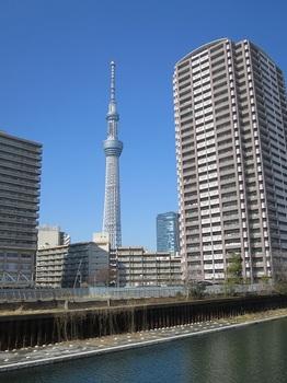IMG_9013 - コピー.JPG
