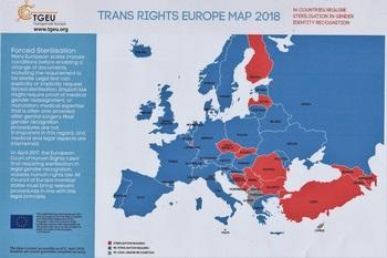 TRANSGENDER EUROPE2018-1 (1) - コピー.jpg