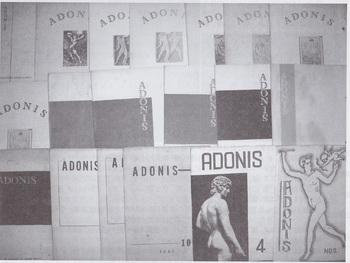 ADONIS(2).jpg