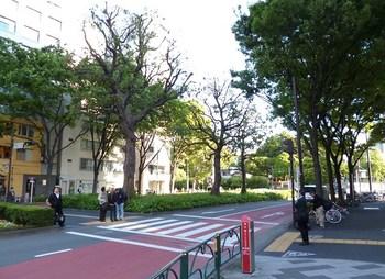 千鳥街跡地現況.jpg